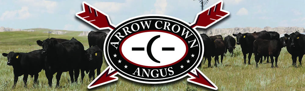 Arrowcrown header
