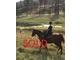 Jas simplee grace %281%29 sold 923e45d9052172d80cf61f837d8dc0c4