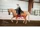 Muscato kid sold fda52eb2ccd2414bcbd5ecd4305969e8