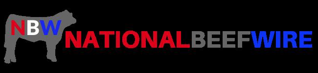 Nbw logo dva global 2020