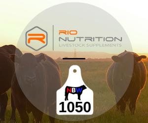 Rio%20nutrition%20spotlight%20banner%20300x250 7ea1cc2e5f8a3ac03dc8eae17bacb926