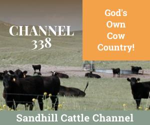 Sandhill 300x250%20px e309e845d02940cffbf16f96166df251