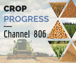Crop%20progress%20channel%20banners%20300x250 cb0e4aec7a9311a56da8ec1f4ab689d7