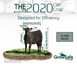 Gs190401 seedstock%202020%20digital%20banners 300x250 3dad37ee34cddc2f4bc3e9853358f8c4