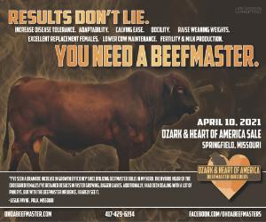 Beefmaster%20sponsor%20feeder%20flash%20feb%2024%202021 0a319ac9f885f97ae4f240a8422116bd