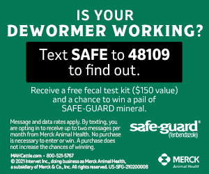 53003 safe guard dvauction banners 2021update bannerad 300x250 0 0 dc 72ed6bf0c6ef6d8901a0eef49efdc00f