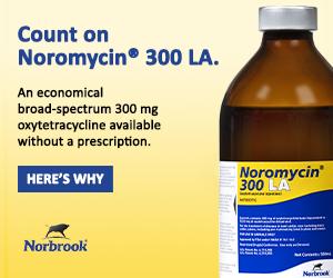 Noromycin digital 300x250%20copy 231e9ba0e6e3530c709e05b55fcb5409