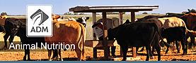 ADM Animal Nutrition banner