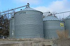 Grain Stocks thumbnail