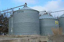 Grain Stocks thumbnail
