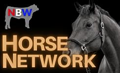 Horse Network thumbnail