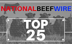 The TOP 25 - Steers and Heifers All Weights Largest Strings Most Recent  thumbnail