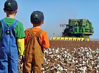 Texas Farm Bureau thumbnail