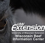 University of Wisconsin - Beef Information Center thumbnail