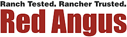 Red Angus Association of America thumbnail