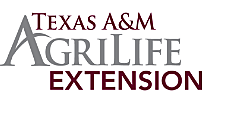 Texas A&M thumbnail