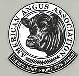 American Angus Association thumbnail