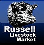 Russell Livestock Market thumbnail