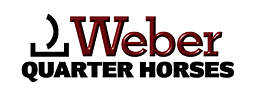 Weber Quarter Horses banner