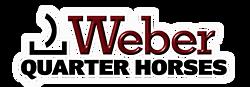 Weber Quarter Horses thumbnail