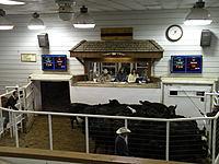 Callaway Livestock Center thumbnail