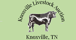 Knoxville Livestock Auction thumbnail